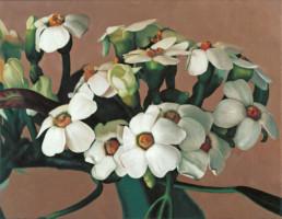 Euphorbien, 2000, OOC, 45 x 58 cm