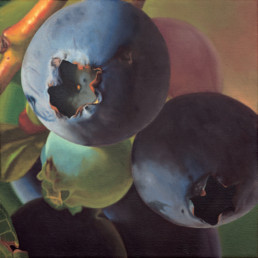 Blueberries II, 2001, OOC, 16 x 16 in