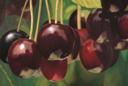 Cherries II, 2002, Oil on alu, 32 x 47 in
