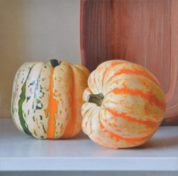 Pumpkins, 2015, OOC, 16 x 16 in