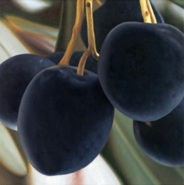 Olives, 2003, OOC, 16 x 16 in