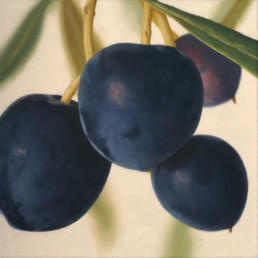Olives III, 2005, OOC, 16 x 16 in