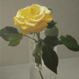Rose XLIV, 2007, OOC, 90 x 90 cm