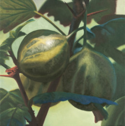 Gooseberries, 1999, OOC, 16 x 16 in