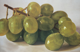 Grapes VI, 2002, OOC, 34 x 55 in