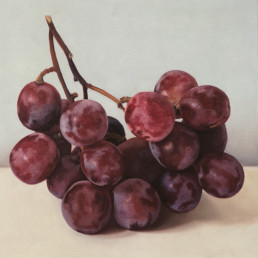 Grapes X, 2002, OOC, 16 x 16 in