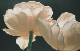 Tulips III, 2003, OOC, 34 x 55 in