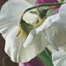 Wicken II, 2003, OOC, 40 x 40 cm