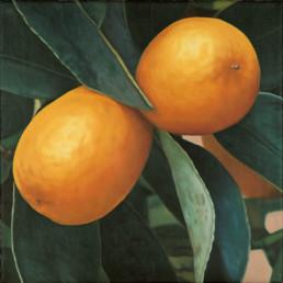 Kumquats IV, 2002, OOC, 40 x 40 cm